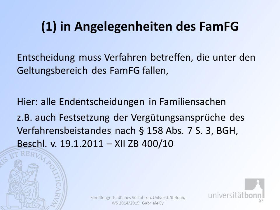 (1) in Angelegenheiten des FamFG Entscheidung muss Verfahren betreffen, die unter den Geltungsbereich des FamFG fallen, Hier: alle Endentscheidungen in Familiensachen z.B.