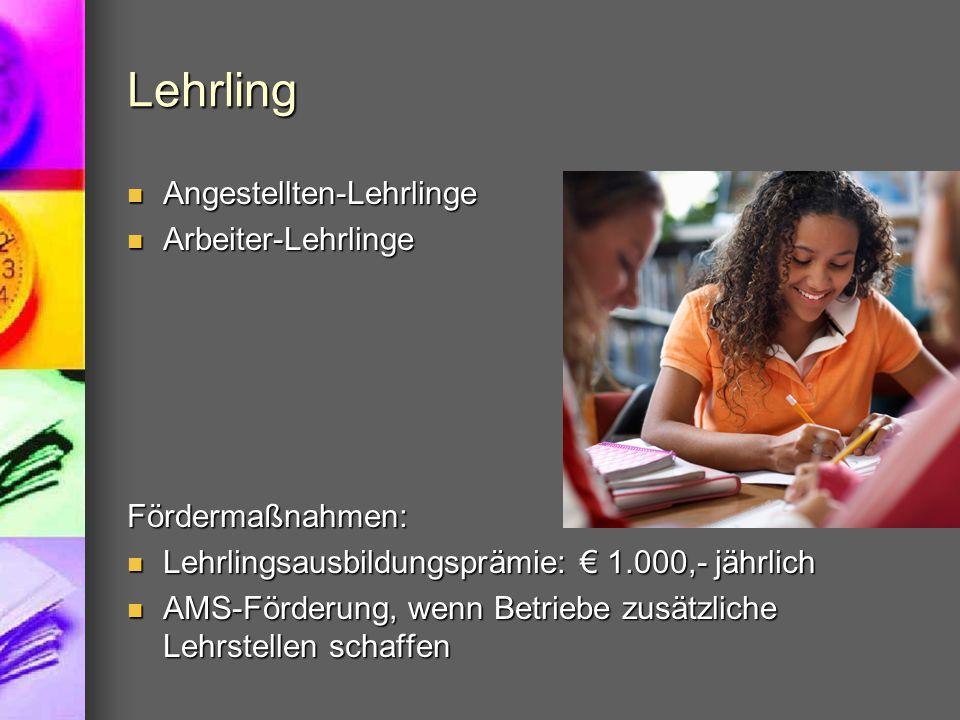 Lehrling Angestellten-Lehrlinge Angestellten-Lehrlinge Arbeiter-Lehrlinge Arbeiter-LehrlingeFördermaßnahmen: Lehrlingsausbildungsprämie: € 1.000,- jäh