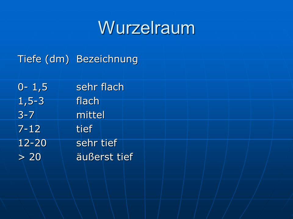 Wurzelraum Tiefe (dm)Bezeichnung 0- 1,5sehr flach 1,5-3flach 3-7mittel 7-12tief 12-20sehr tief > 20äußerst tief
