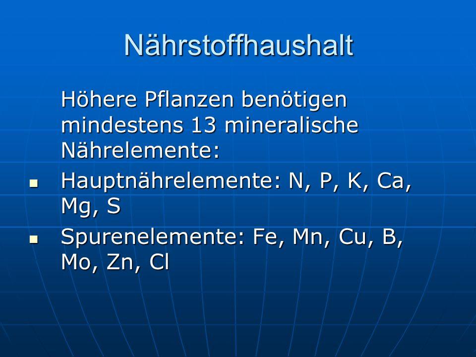 Nährstoffhaushalt Höhere Pflanzen benötigen mindestens 13 mineralische Nährelemente: Hauptnährelemente: N, P, K, Ca, Mg, S Hauptnährelemente: N, P, K, Ca, Mg, S Spurenelemente: Fe, Mn, Cu, B, Mo, Zn, Cl Spurenelemente: Fe, Mn, Cu, B, Mo, Zn, Cl