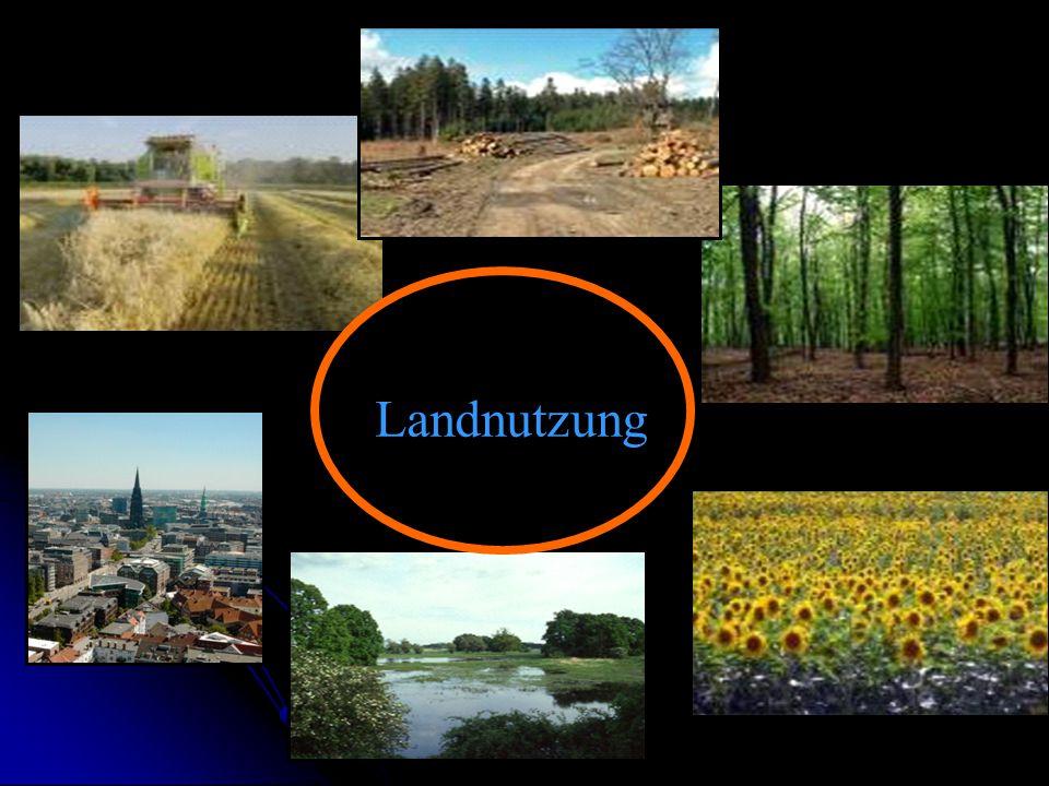 Landnutzung