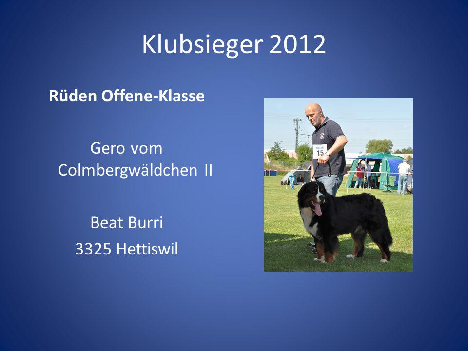 Klubsieger 2012 Rüden Offene-Klasse Gero vom Colmbergwäldchen II Beat Burri 3325 Hettiswil