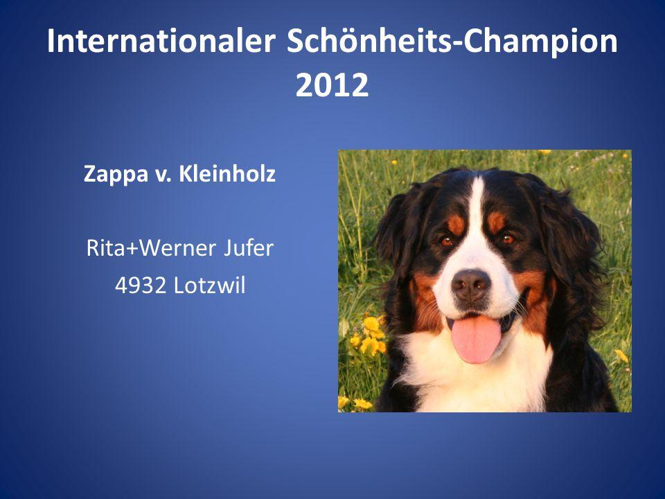 Internationaler Schönheits-Champion 2012 Zappa v. Kleinholz Rita+Werner Jufer 4932 Lotzwil