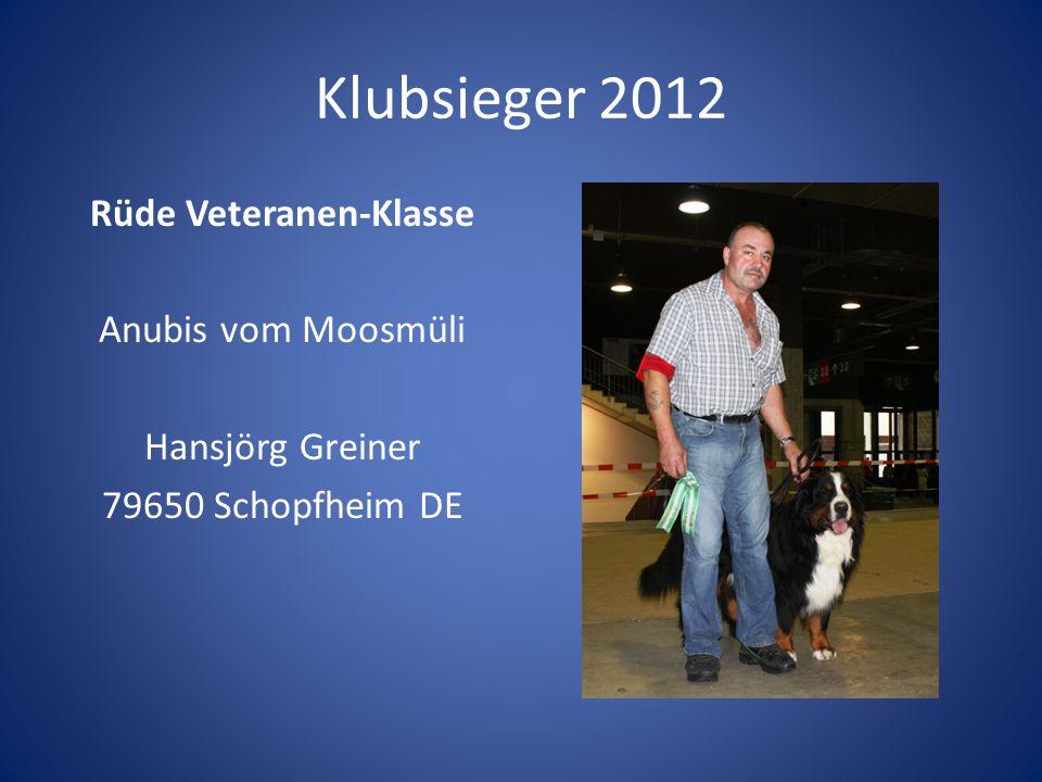 Klubsieger 2012 Rüde Veteranen-Klasse Anubis vom Moosmüli Hansjörg Greiner 79650 Schopfheim DE