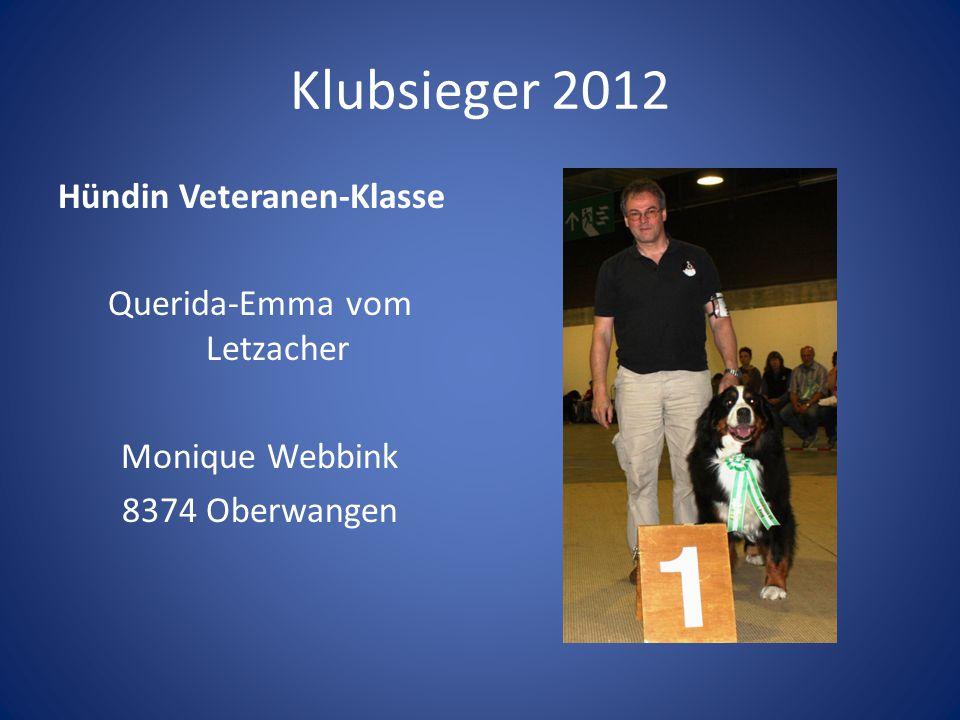 Klubsieger 2012 Hündin Veteranen-Klasse Querida-Emma vom Letzacher Monique Webbink 8374 Oberwangen