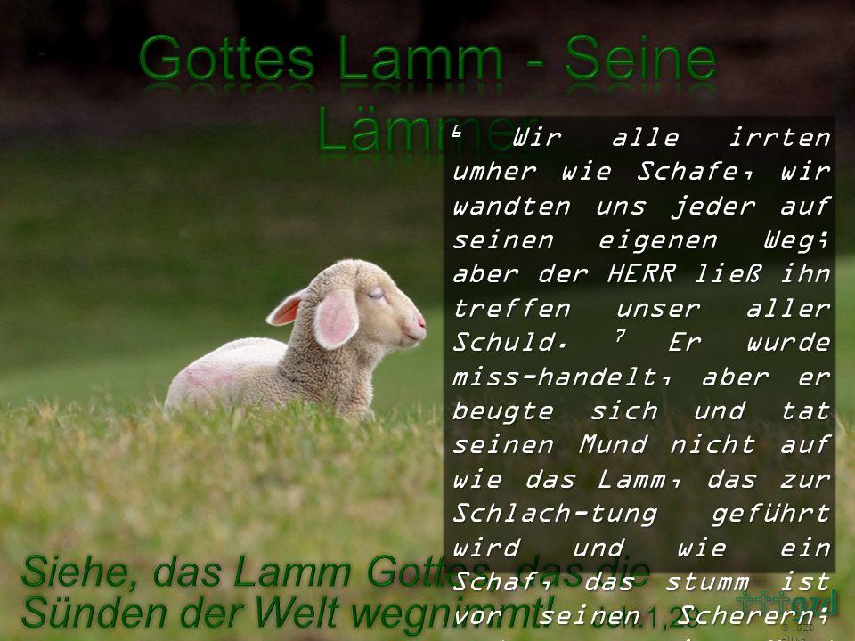 6 Wir alle irrten umher wie Schafe, wir wandten uns jeder auf seinen eigenen Weg; aber der HERR ließ ihn treffen unser aller Schuld. 7 Er wurde miss-h