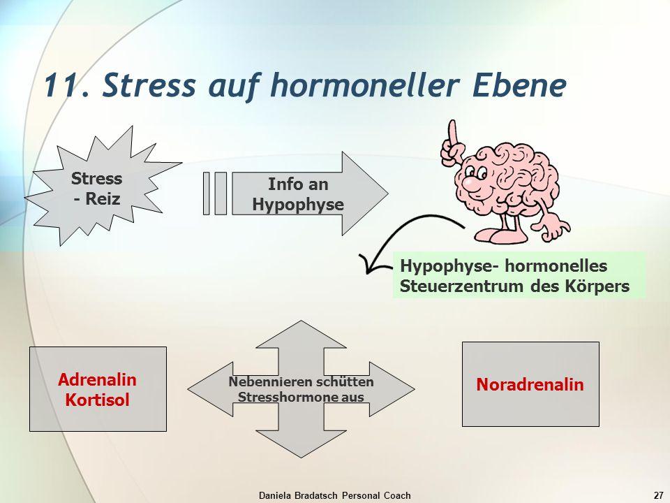 Daniela Bradatsch Personal Coach27 11. Stress auf hormoneller Ebene Stress - Reiz Info an Hypophyse Hypophyse- hormonelles Steuerzentrum des Körpers N