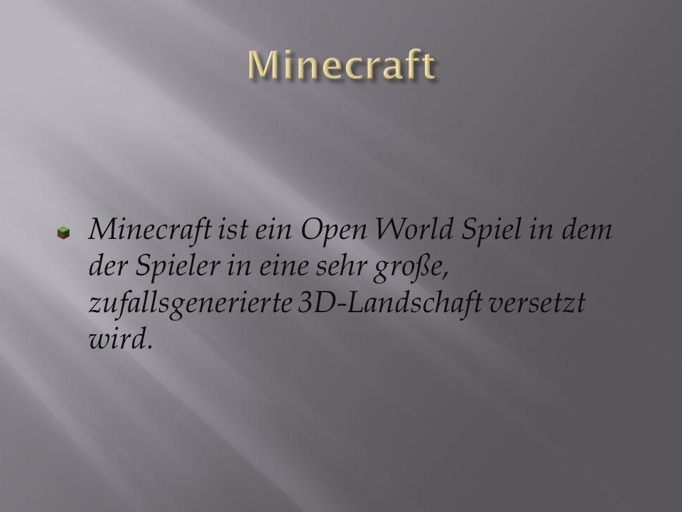 Minecraft ist ein Open World Spiel in dem der Spieler in eine sehr große, zufallsgenerierte 3D-Landschaft versetzt wird.