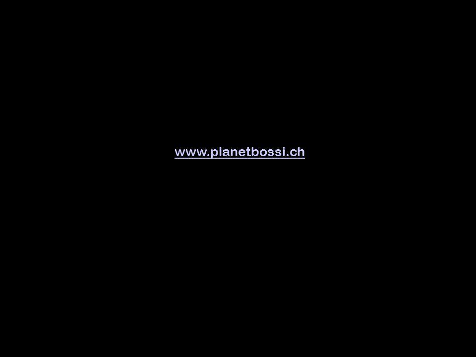 …und Schnellzug Bern–Sion E N D E