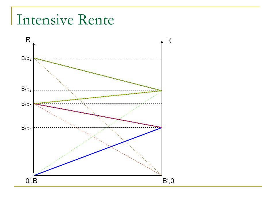 Intensive Rente R B',0 R 0',B B/b 1 B/b 2 B/b 3 B/b 4