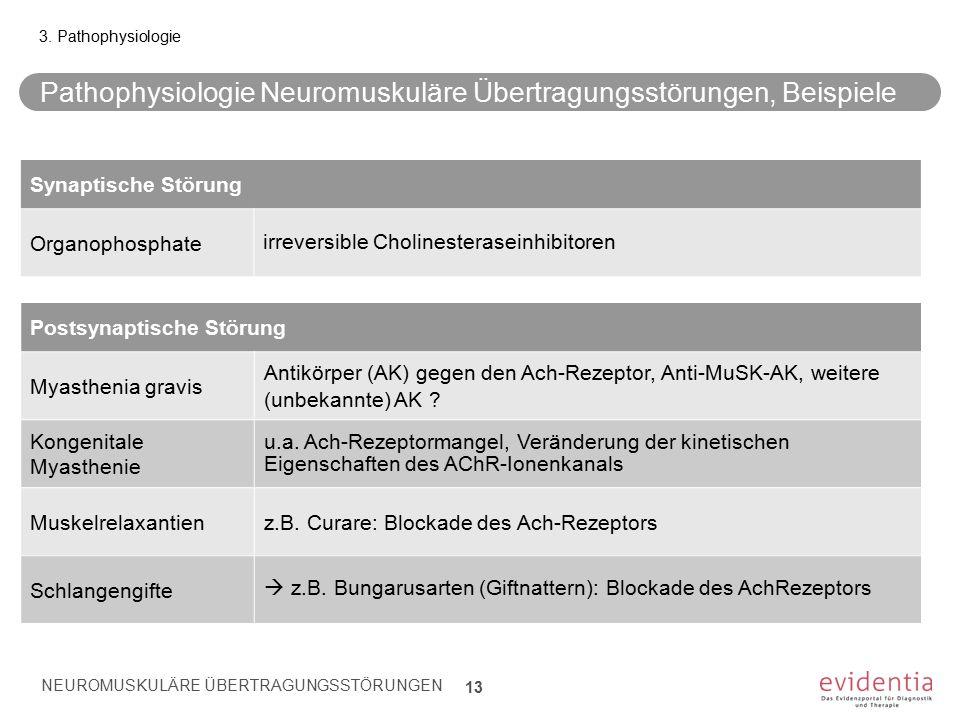 Pathophysiologie Neuromuskuläre Übertragungsstörungen, Beispiele NEUROMUSKULÄRE ÜBERTRAGUNGSSTÖRUNGEN 13 3. Pathophysiologie Postsynaptische Störung M
