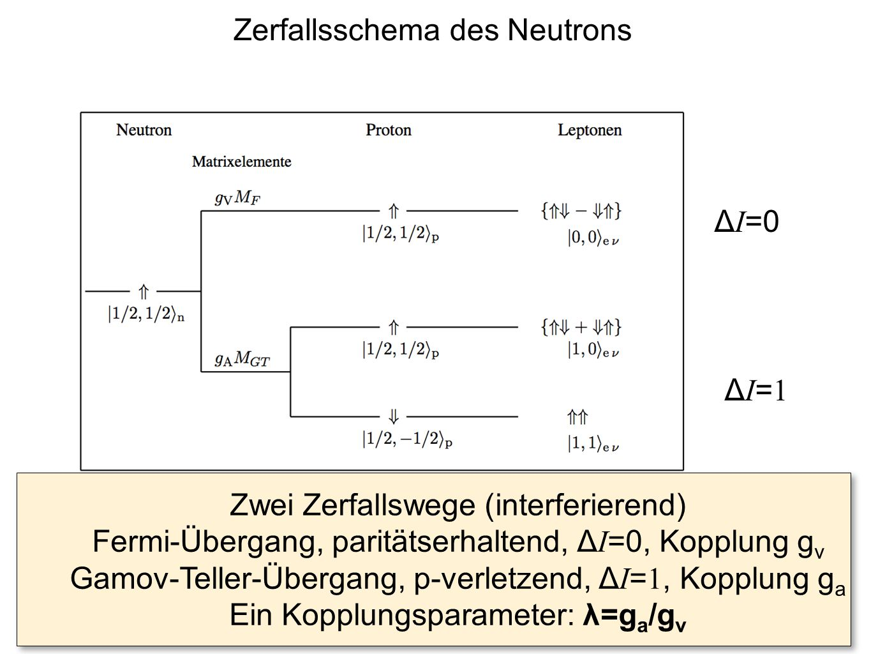 Zerfallsschema des Neutrons Zwei Zerfallswege (interferierend) Fermi-Übergang, paritätserhaltend, Δ I =0, Kopplung g v Gamov-Teller-Übergang, p-verlet