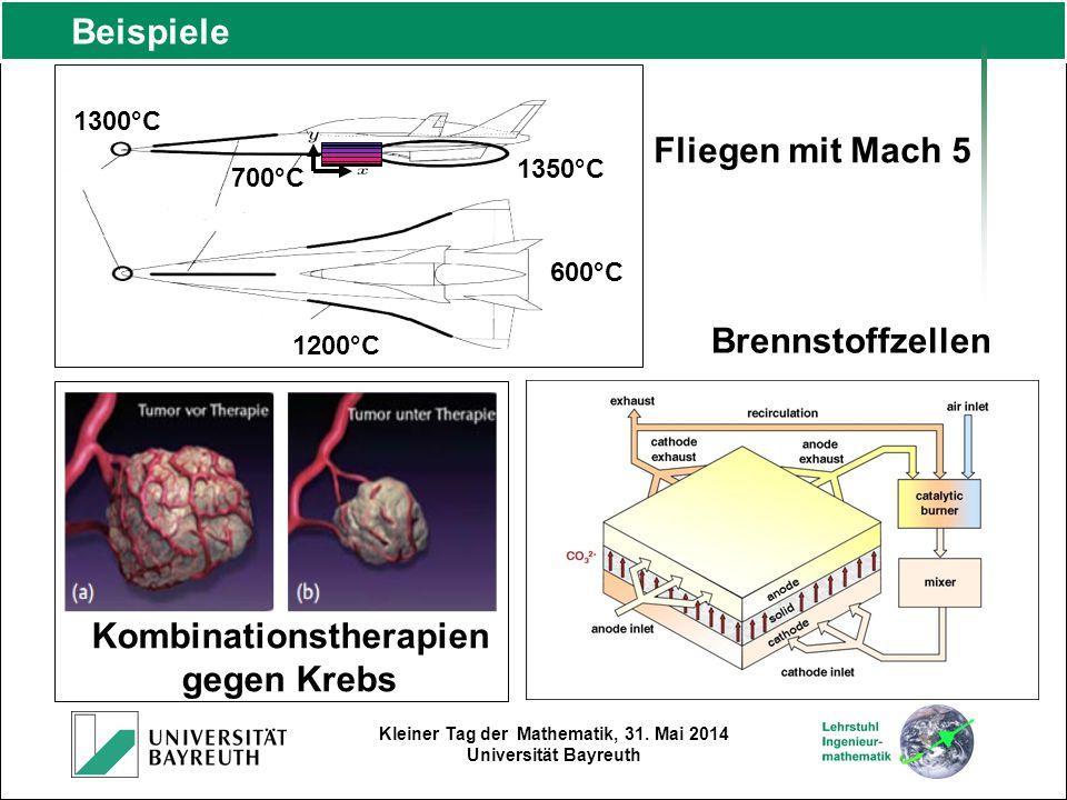 Kleiner Tag der Mathematik, 31. Mai 2014 Universität Bayreuth Beispiele 1300°C 600°C 700°C 1350°C 1200°C Fliegen mit Mach 5 Kombinationstherapien gege