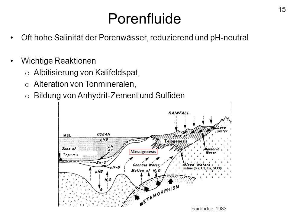 Porenfluide Oft hohe Salinität der Porenwässer, reduzierend und pH-neutral Wichtige Reaktionen o Albitisierung von Kalifeldspat, o Alteration von Tonm
