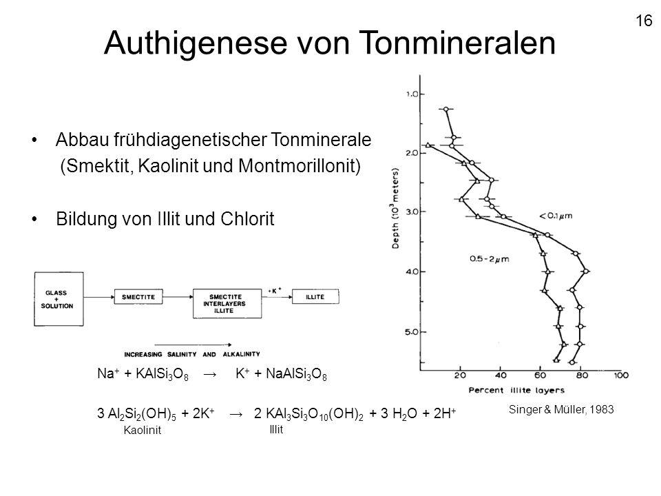 Authigenese von Tonmineralen Abbau frühdiagenetischer Tonminerale (Smektit, Kaolinit und Montmorillonit) Bildung von Illit und Chlorit Na + + KAlSi 3
