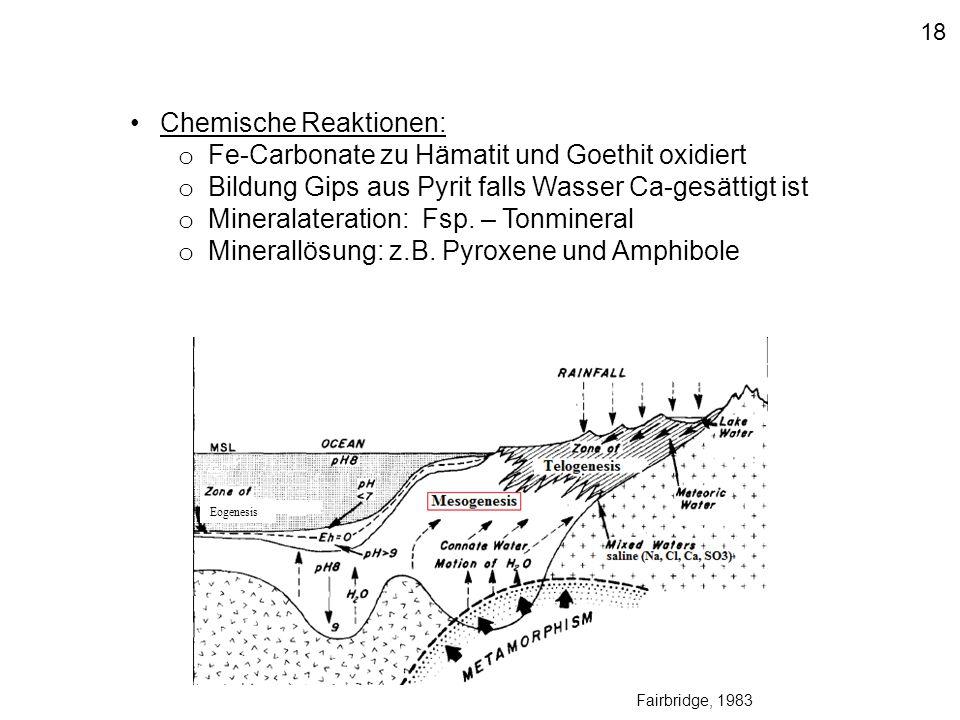 Eogenesis 18 Fairbridge, 1983 Chemische Reaktionen: o Fe-Carbonate zu Hämatit und Goethit oxidiert o Bildung Gips aus Pyrit falls Wasser Ca-gesättigt