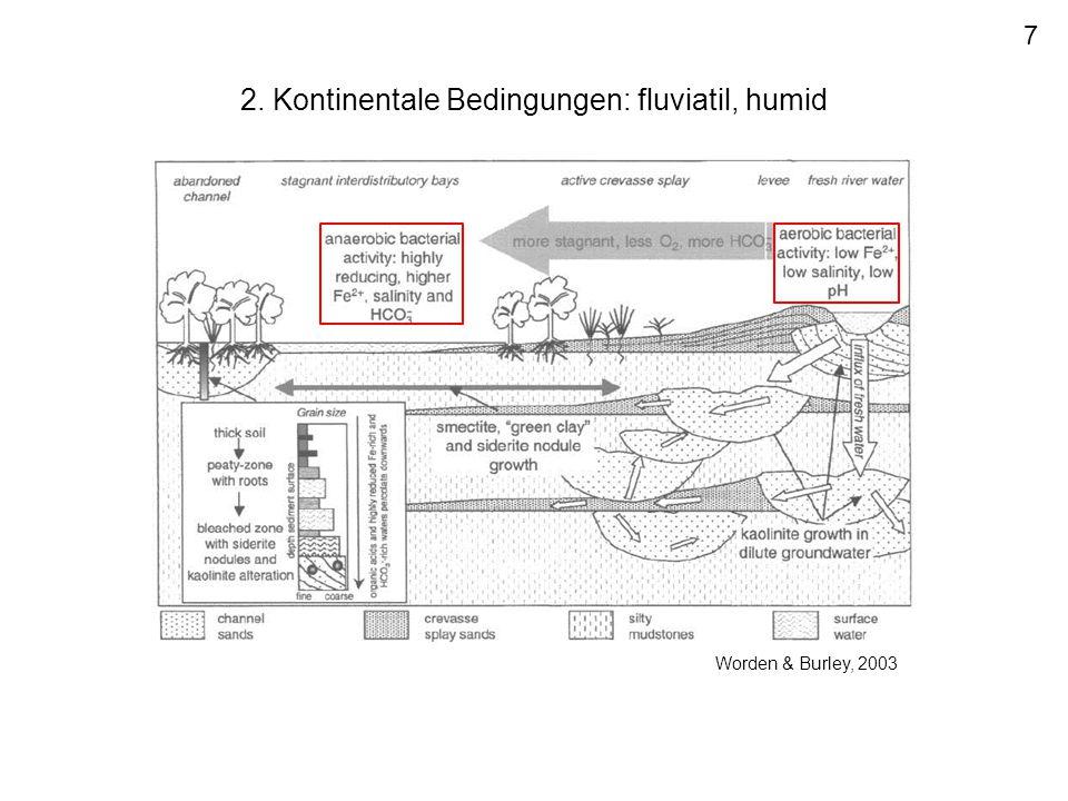 2. Kontinentale Bedingungen: fluviatil, humid 7 Worden & Burley, 2003