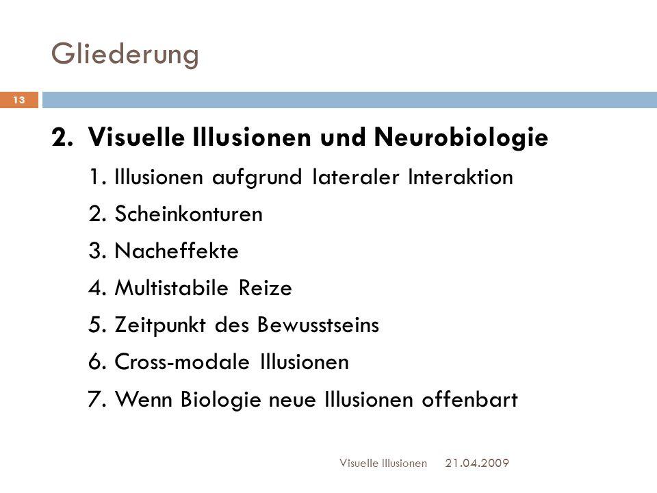 Gliederung 21.04.2009Visuelle Illusionen 13 2. Visuelle Illusionen und Neurobiologie 1. Illusionen aufgrund lateraler Interaktion 2. Scheinkonturen 3.