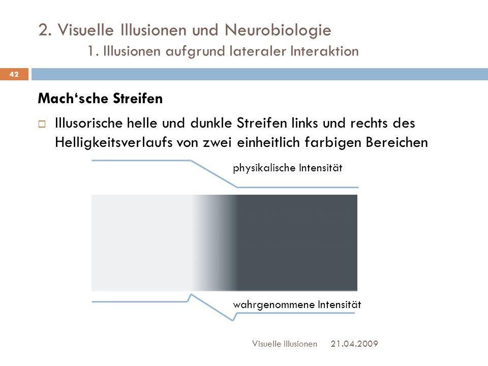2. Visuelle Illusionen und Neurobiologie 1. Illusionen aufgrund lateraler Interaktion Mach'sche Streifen  Illusorische helle und dunkle Streifen link