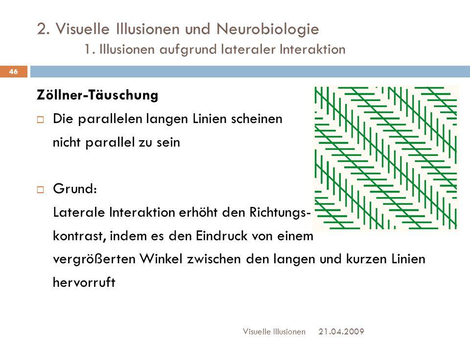2. Visuelle Illusionen und Neurobiologie 1. Illusionen aufgrund lateraler Interaktion Zöllner-Täuschung  Die parallelen langen Linien scheinen nicht