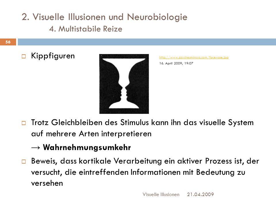 2. Visuelle Illusionen und Neurobiologie 4. Multistabile Reize  Kippfiguren http://www.psychesmirrors.com/facevase.jpg 16. April 2009, 19:07 http://w