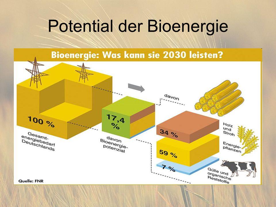 Potential der Bioenergie