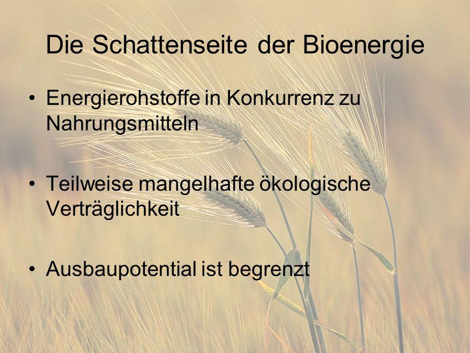 Die Schattenseite der Bioenergie Energierohstoffe in Konkurrenz zu Nahrungsmitteln Teilweise mangelhafte ökologische Verträglichkeit Ausbaupotential i