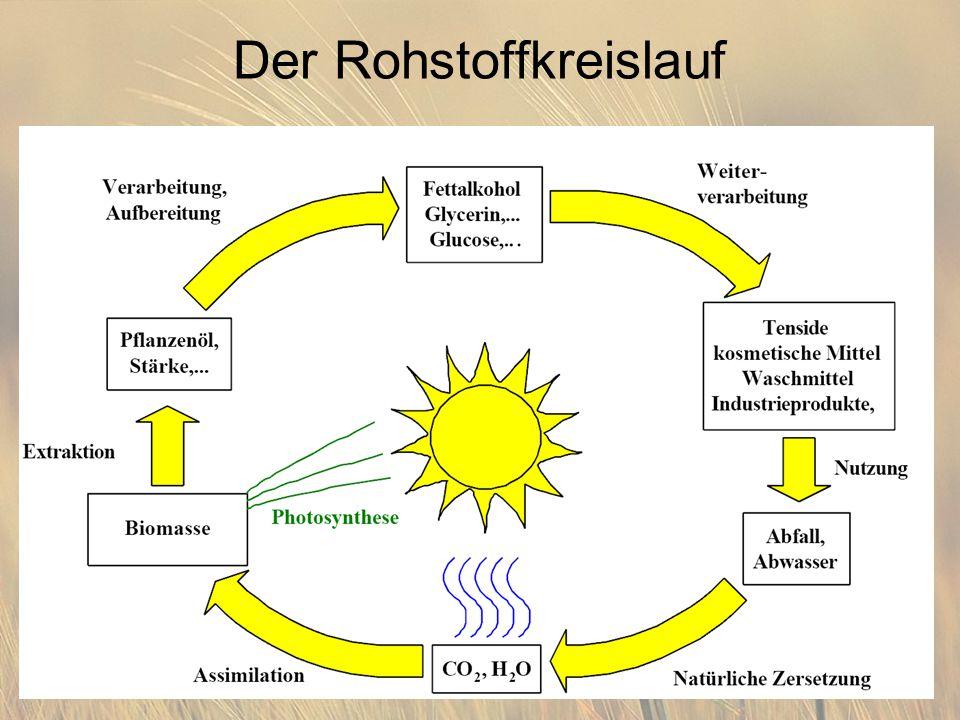 Der Rohstoffkreislauf