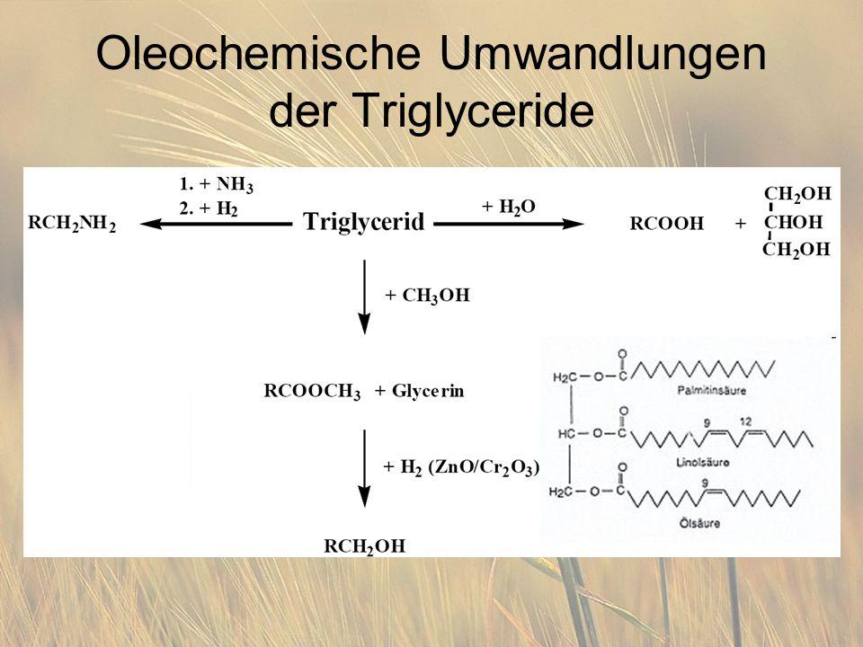 Oleochemische Umwandlungen der Triglyceride