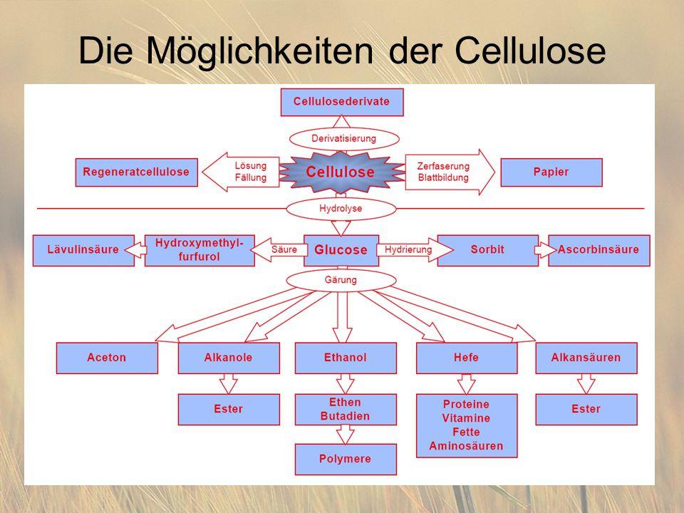 Die Möglichkeiten der Cellulose
