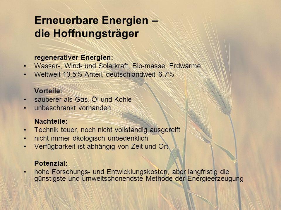 Erneuerbare Energien – die Hoffnungsträger regenerativer Energien: Wasser-, Wind- und Solarkraft, Bio-masse, Erdwärme Weltweit 13,5% Anteil, deutschlandweit 6,7% Vorteile: sauberer als Gas, Öl und Kohle unbeschränkt vorhanden.