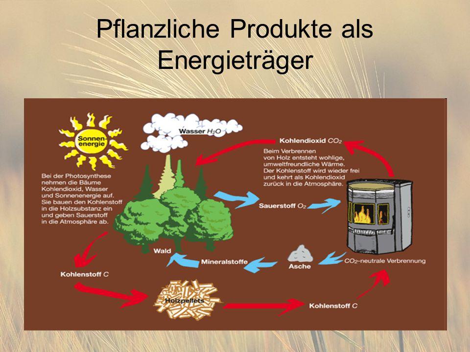Pflanzliche Produkte als Energieträger