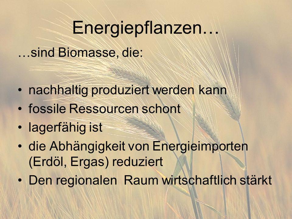 Energiepflanzen… …sind Biomasse, die: nachhaltig produziert werden kann fossile Ressourcen schont lagerfähig ist die Abhängigkeit von Energieimporten (Erdöl, Ergas) reduziert Den regionalen Raum wirtschaftlich stärkt