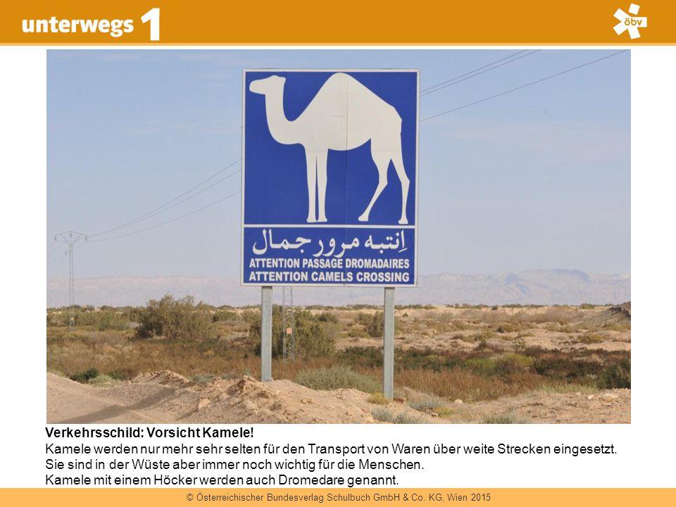 © Österreichischer Bundesverlag Schulbuch GmbH & Co. KG, Wien 2015 Verkehrsschild: Vorsicht Kamele! Kamele werden nur mehr sehr selten für den Transpo