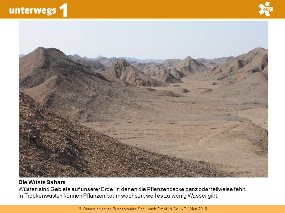 © Österreichischer Bundesverlag Schulbuch GmbH & Co. KG, Wien 2015 Die Wüste Sahara Wüsten sind Gebiete auf unserer Erde, in denen die Pflanzendecke g