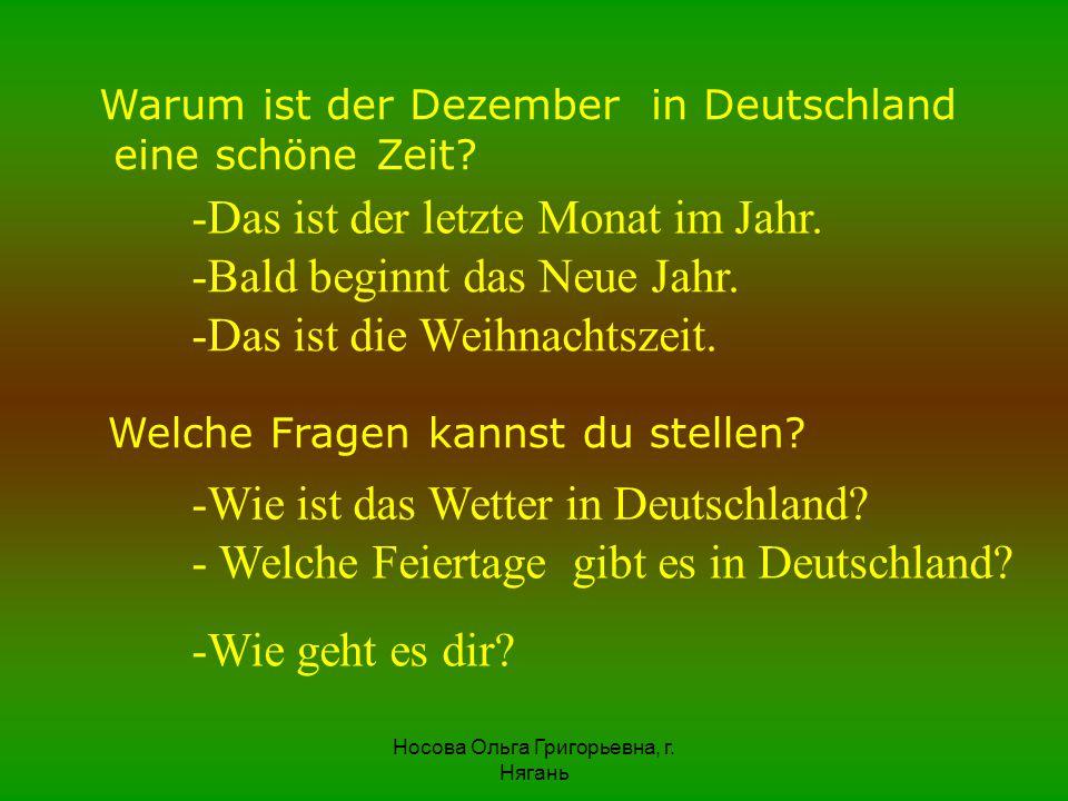 Warum ist der Dezember in Deutschland eine schöne Zeit? -Das ist der letzte Monat im Jahr. -Bald beginnt das Neue Jahr. -Das ist die Weihnachtszeit. W
