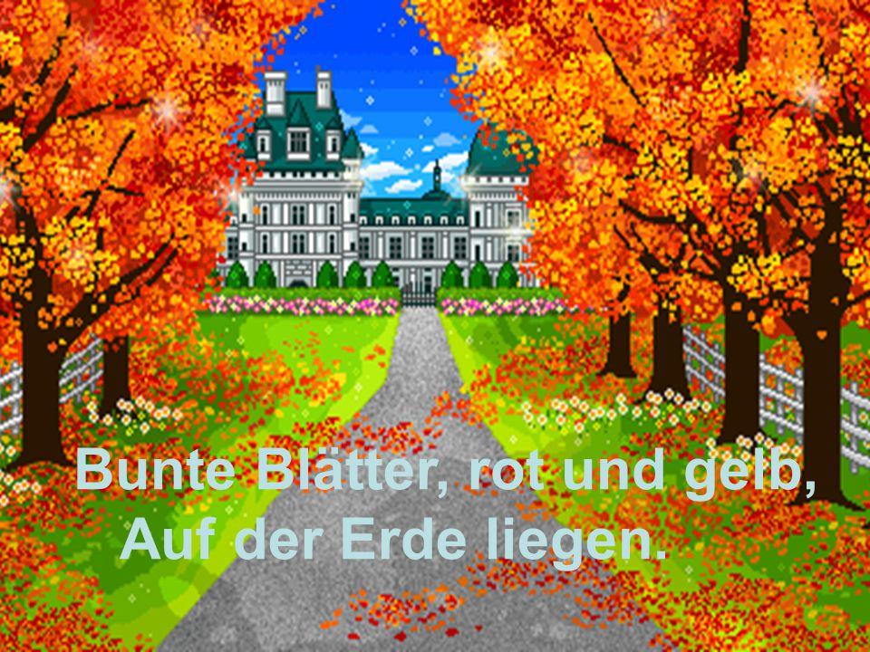 Bunte Blätter, rot und gelb, Auf der Erde liegen.