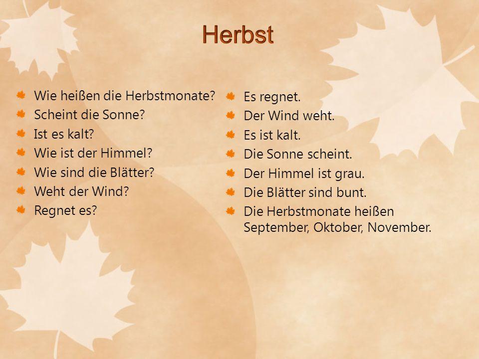 Wie heißen die Herbstmonate? Scheint die Sonne? Ist es kalt? Wie ist der Himmel? Wie sind die Blätter? Weht der Wind? Regnet es? Es regnet. Der Wind w