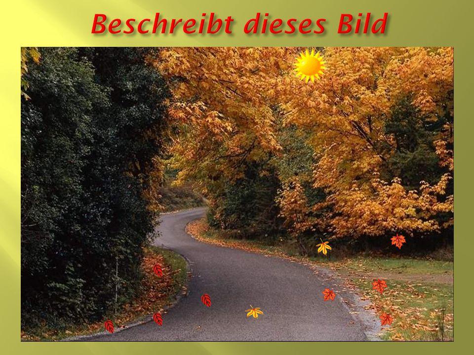 Rot Gelb Grün Orange Braun красный коричневый зелёный жёлтый оранжевый