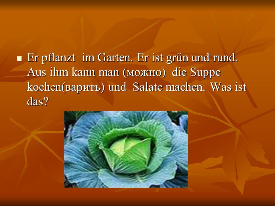 Er pflanzt im Garten. Er ist grün und rund. Aus ihm kann man (можно) die Suppe kochen(варить) und Salate machen. Was ist das? Er pflanzt im Garten. Er