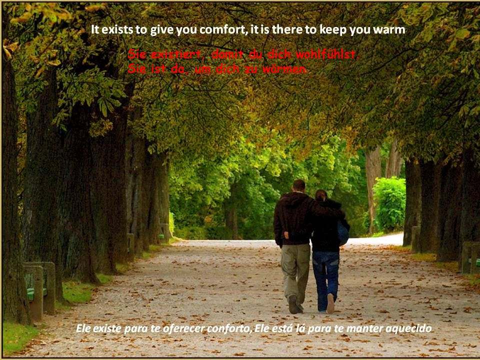 Vielleicht ist Liebe wie ein Ruheplatz, wie ein Schutz vor Sturm.
