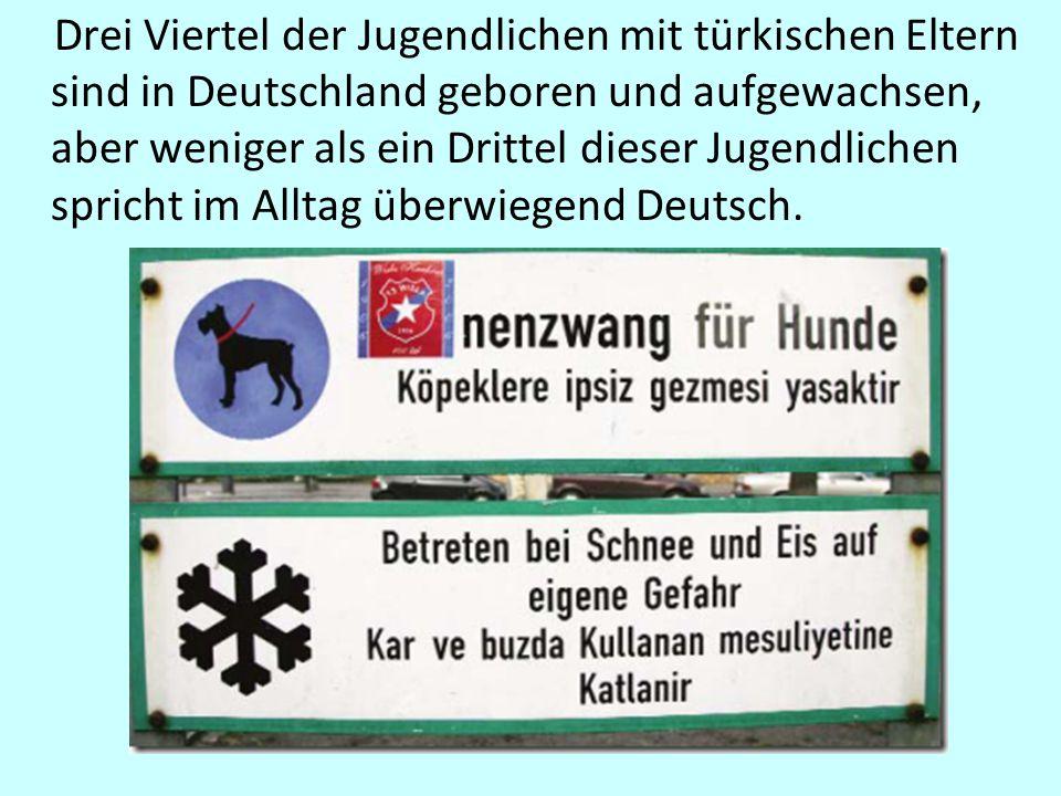 Drei Viertel der Jugendlichen mit türkischen Eltern sind in Deutschland geboren und aufgewachsen, aber weniger als ein Drittel dieser Jugendlichen spricht im Alltag überwiegend Deutsch.