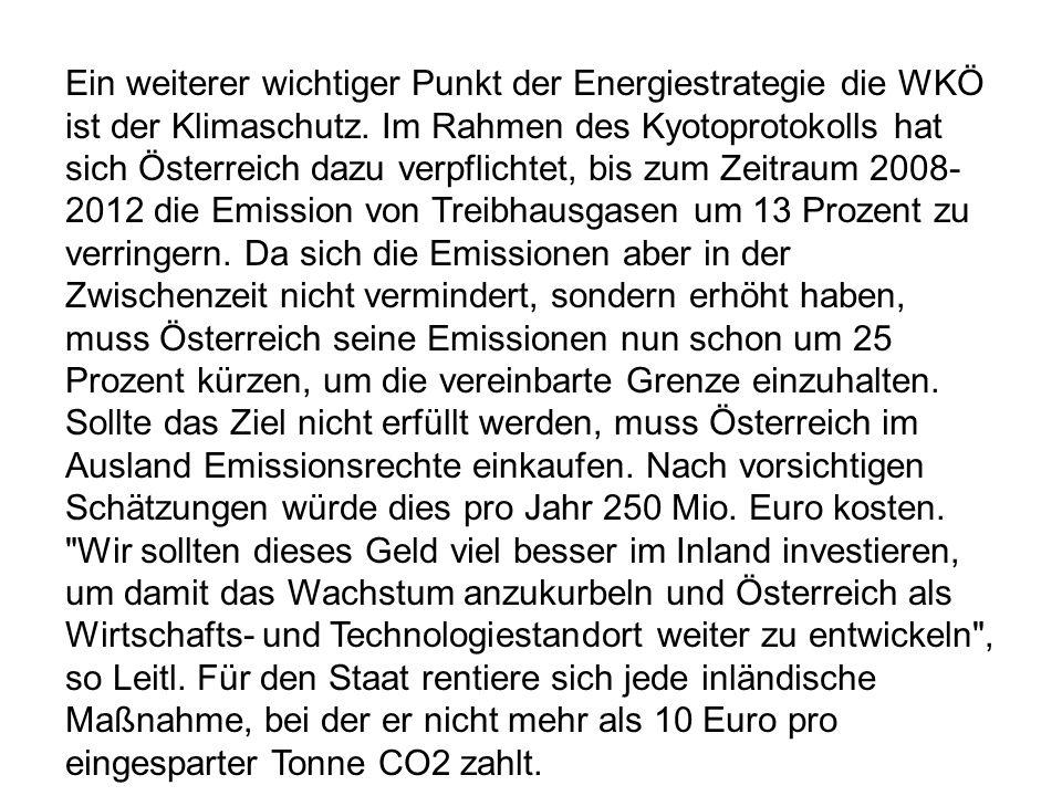 Ein weiterer wichtiger Punkt der Energiestrategie die WKÖ ist der Klimaschutz. Im Rahmen des Kyotoprotokolls hat sich Österreich dazu verpflichtet, bi