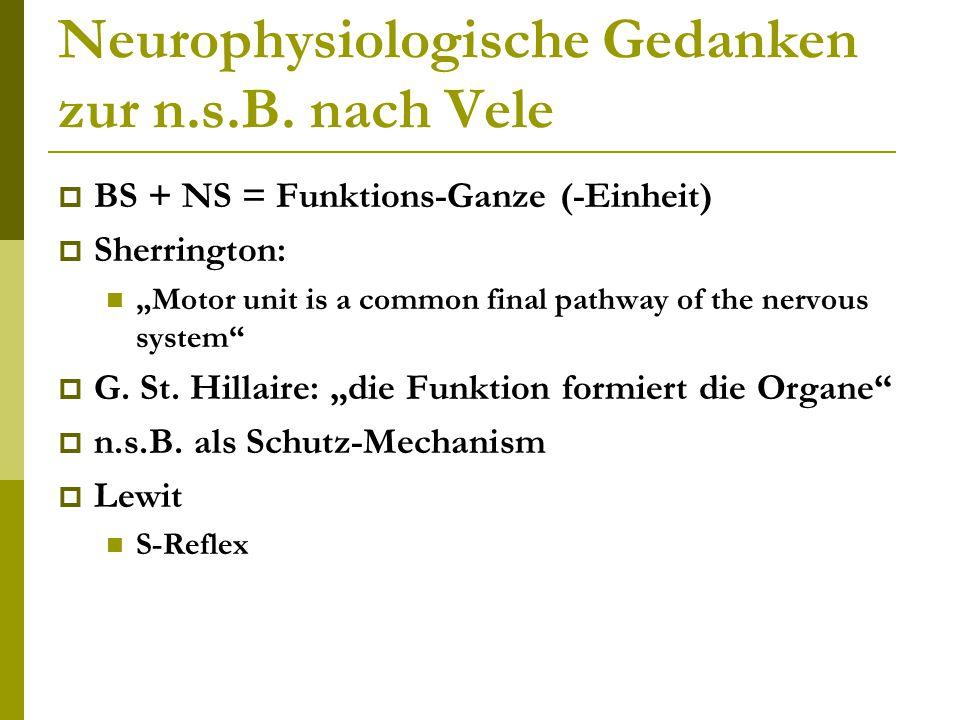 """Neurophysiologische Gedanken zur n.s.B. nach Vele  BS + NS = Funktions-Ganze (-Einheit)  Sherrington: """"Motor unit is a common final pathway of the n"""