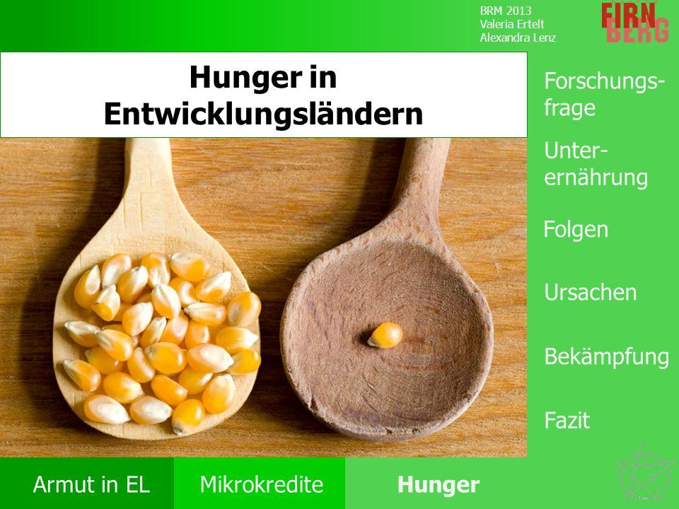 BRM 2013 Valeria Ertelt Alexandra Lenz Armut in ELMikrokrediteHunger Ursachen Folgen Unter- ernährung Bekämpfung Forschungs- frage Fazit Hunger in Ent