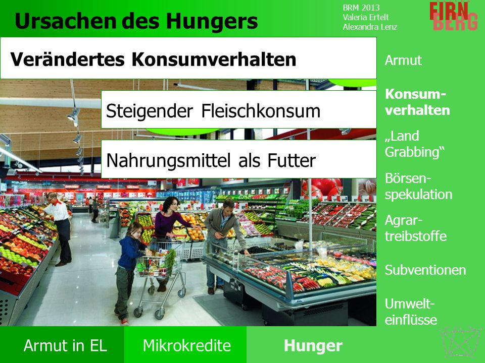 BRM 2013 Valeria Ertelt Alexandra Lenz Armut in ELMikrokrediteHunger Ursachen Folgen Unter- ernährung Bekämpfung Forschungs- frage Fazit Ursachen des