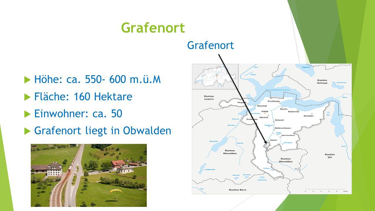 Grafenort  Höhe: ca. 550- 600 m.ü.M  Fläche: 160 Hektare  Einwohner: ca. 50  Grafenort liegt in Obwalden
