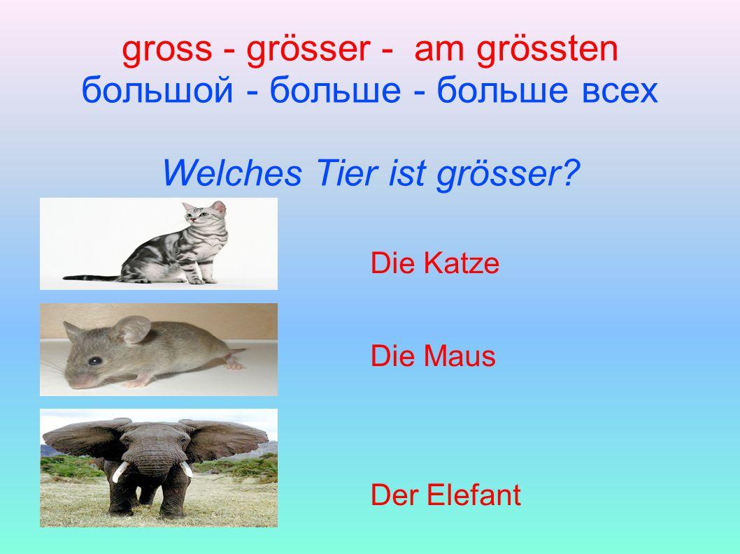 gross - grösser - am grössten большой - больше - больше всех Welches Tier ist grösser.