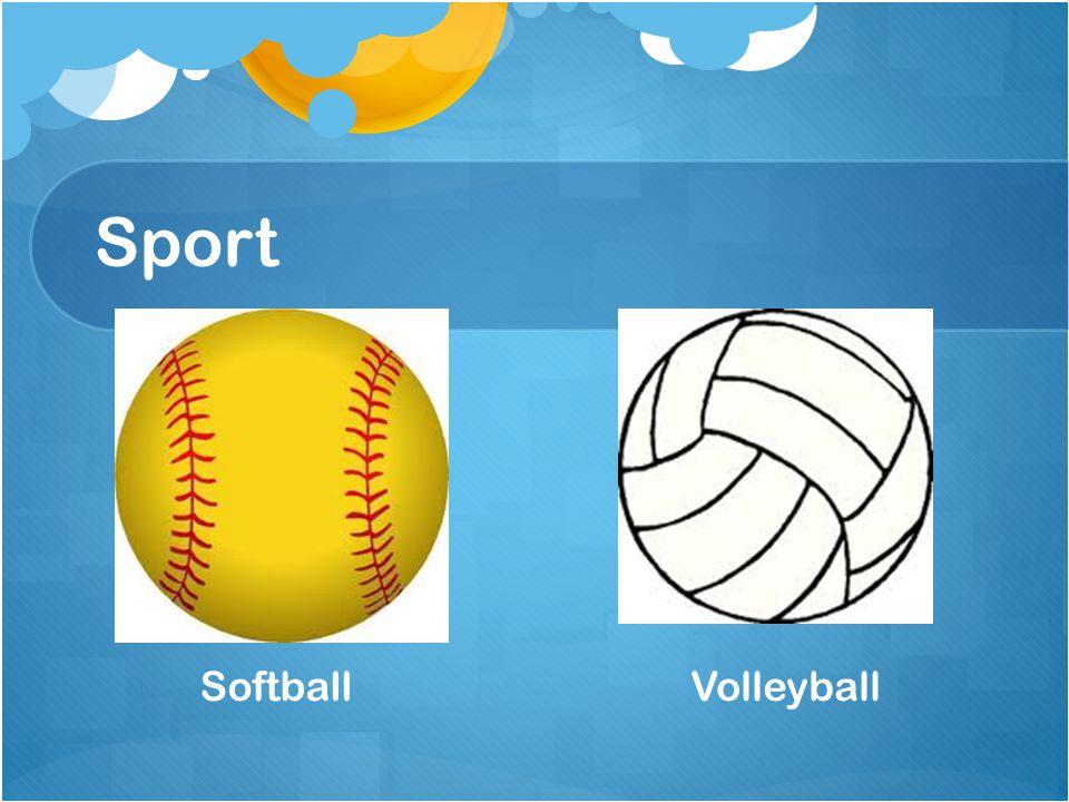 Sport SoftballVolleyball