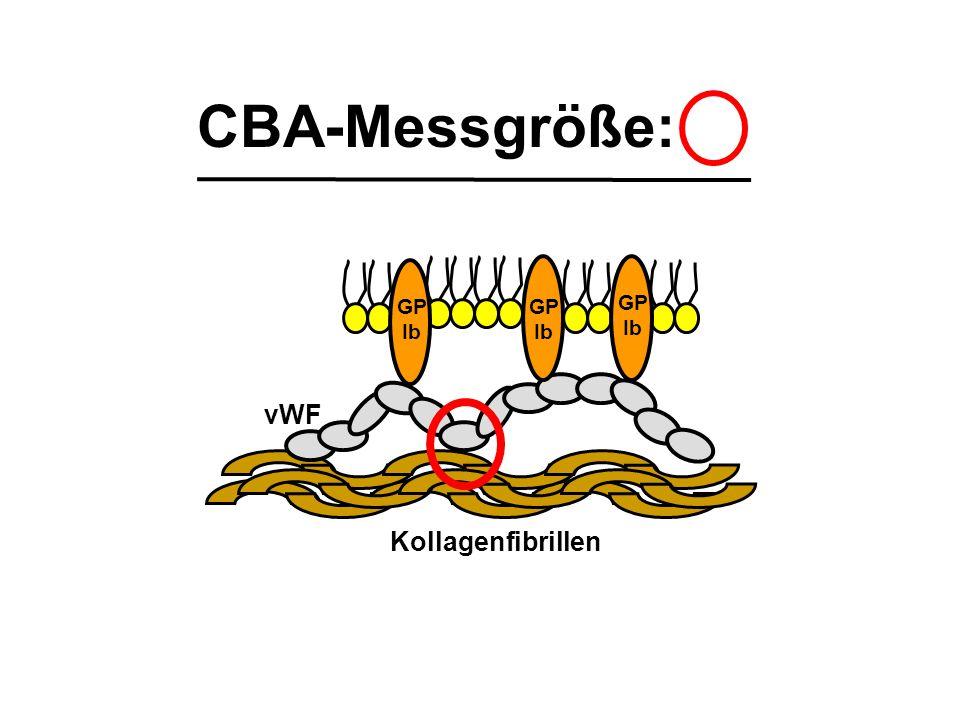 CBA-Messgröße: Kollagenfibrillen vWF GP Ib GP Ib GP Ib